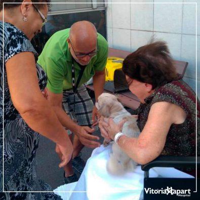 animais-de-estimacao-visitam-pacientes-internados-e-ajudam-na-sua-recuperacao